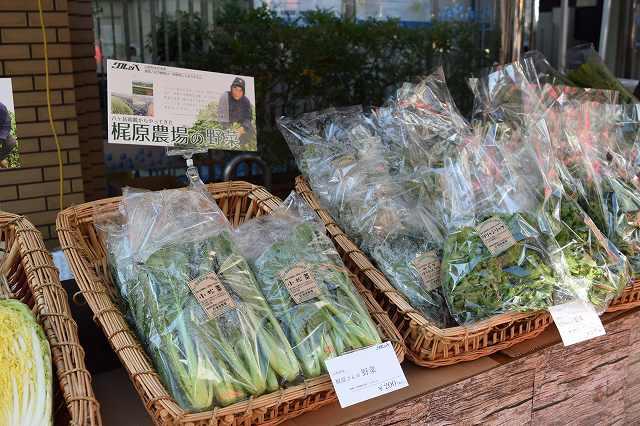 野菜の直売会